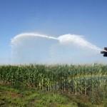 Constanta_Consiliul_Judetean_refacerea_sistemului_de_irigatii_in_agricultura_food_news_romania