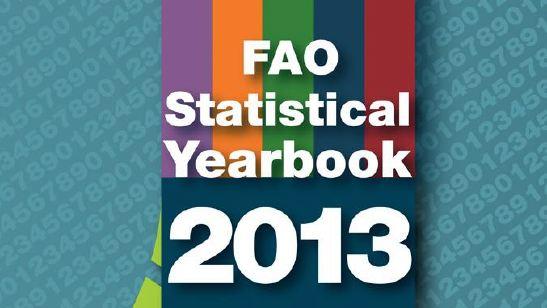 fao_statistical_yearbook_anuarul_statistic_2013_food_news_romania