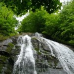 waterfall-World_Water_Day_food_news_romania