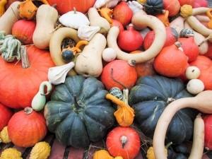 pumpkin-texture-food_news_romania