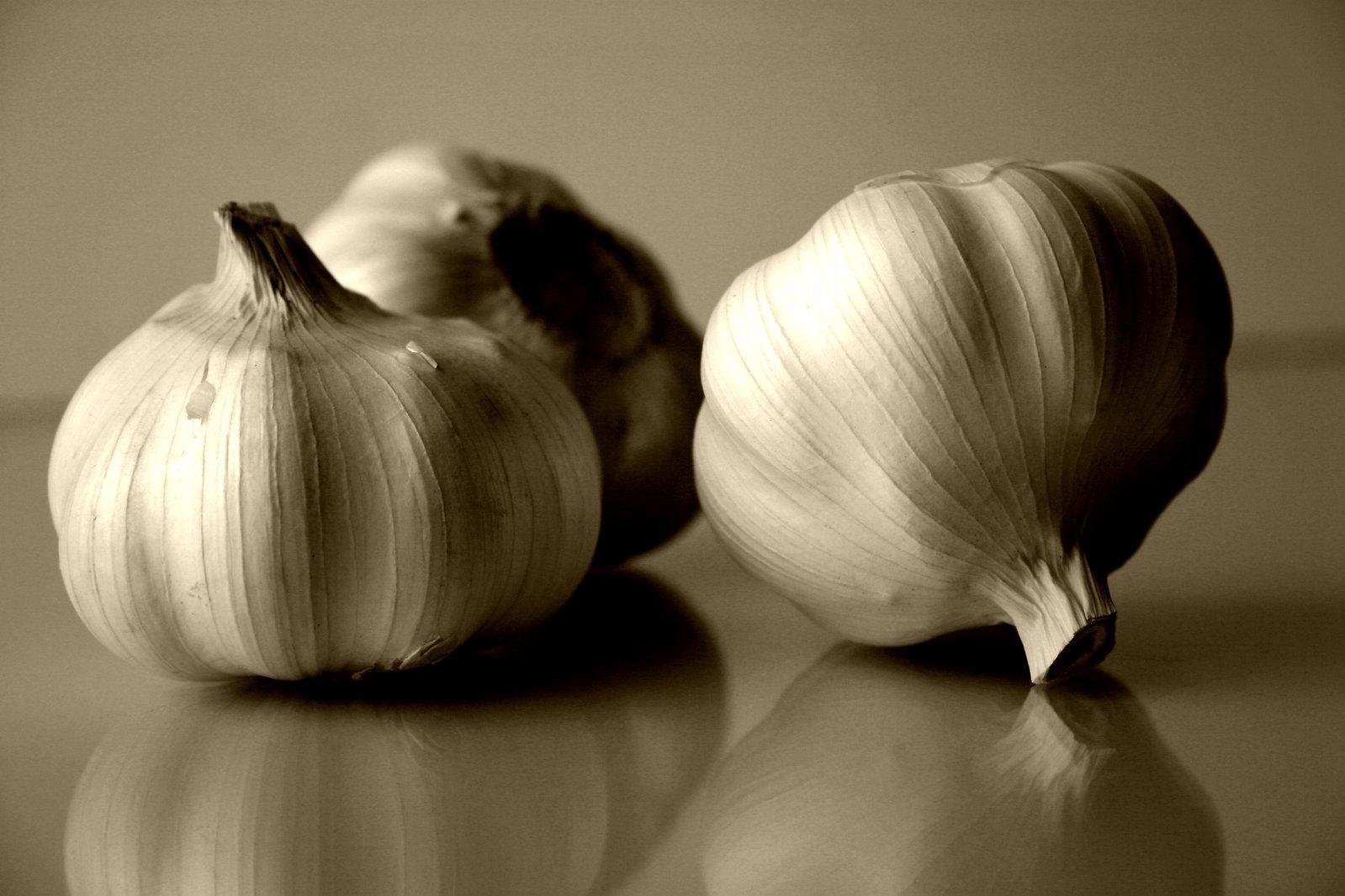 garlics-usturoi_denisa_pinzariu_food_news_romania
