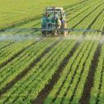 Numărul exploataţiilor agricole este în scădere făţă de anul trecut